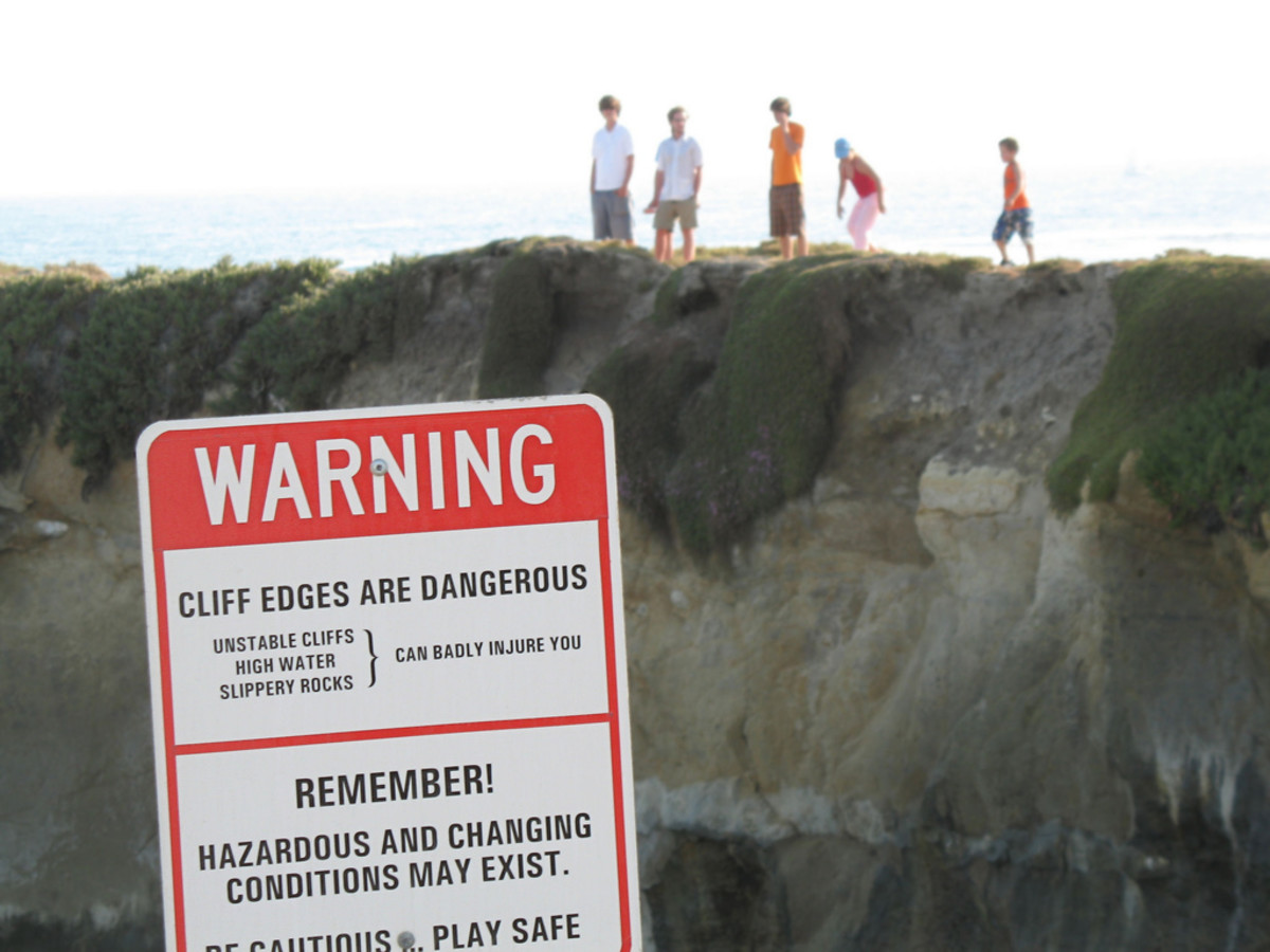 This family of five daredevils crossed a fence and ignored a large warning sign to stand on that cliff.  Who's leading here?