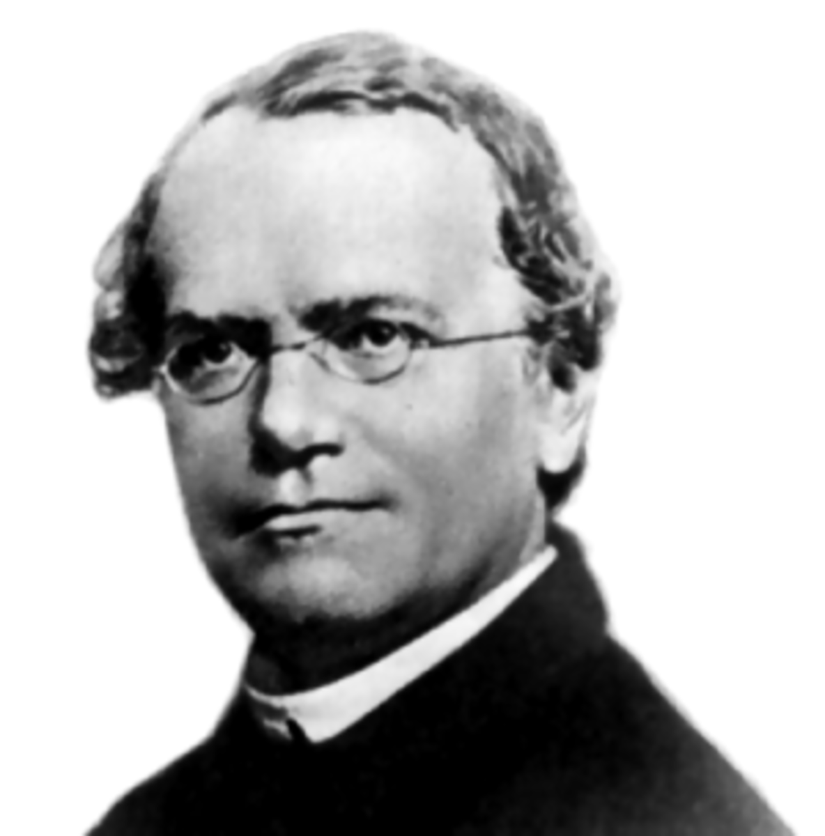 Gregor Mendel is often credited as being the. first modern geneticist.