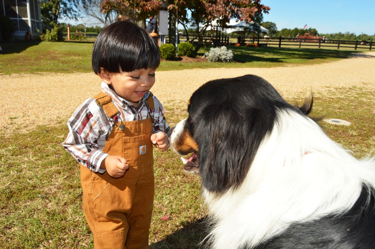 Many kids love talking about animals, from dogs to dinosaurs to dragons.