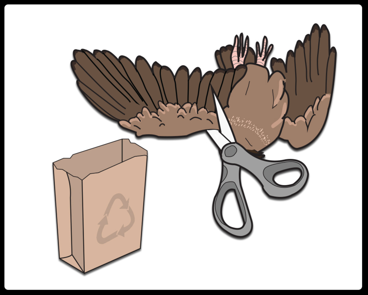 Step 1: Remove the wings with kitchen shears