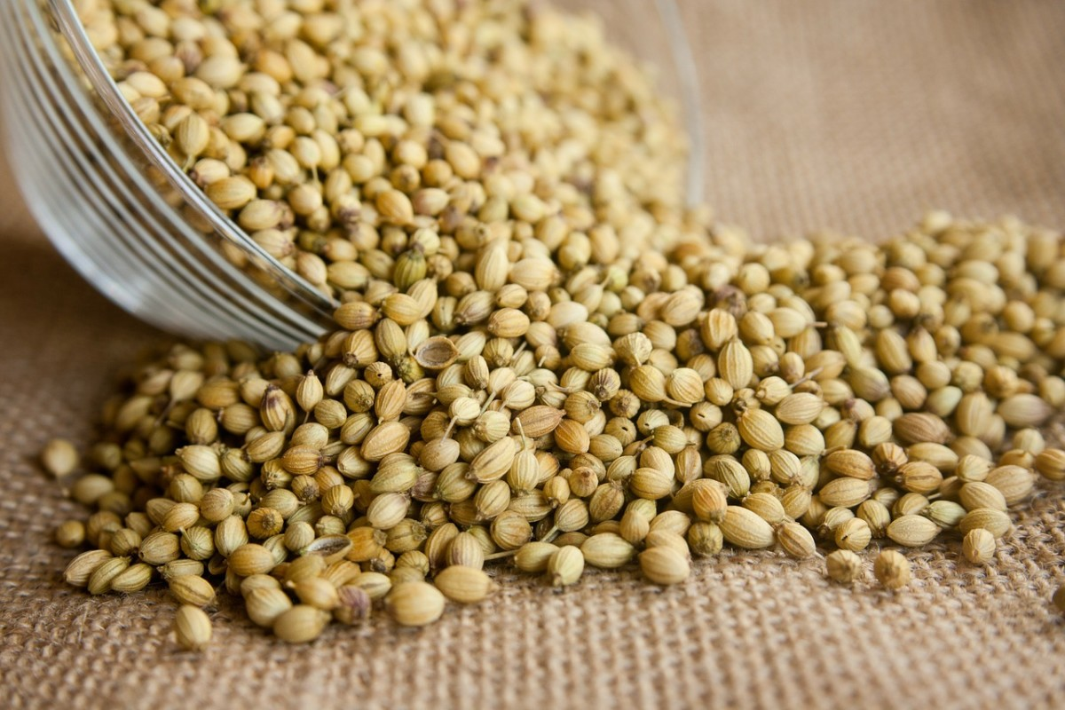 Coriander seeds (UK) or just coriander (US).