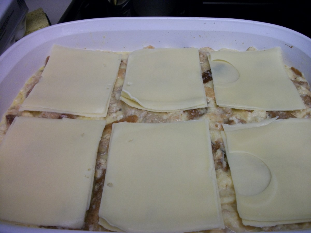 Layer of swiss cheese slices
