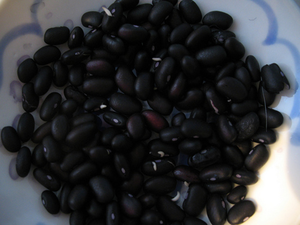 Black beans can be used to make delicious burgers.