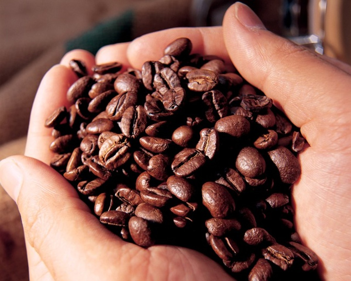 How to Store Coffee and Keep it Fresh
