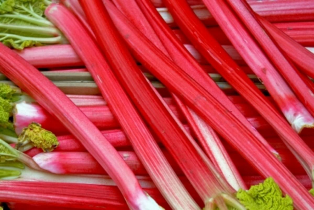 rhubarb-tart-recipe