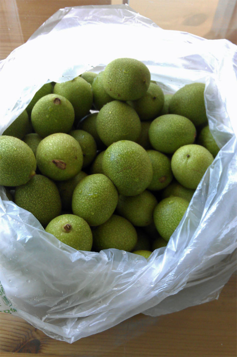 You start with these: green, unripe walnuts.