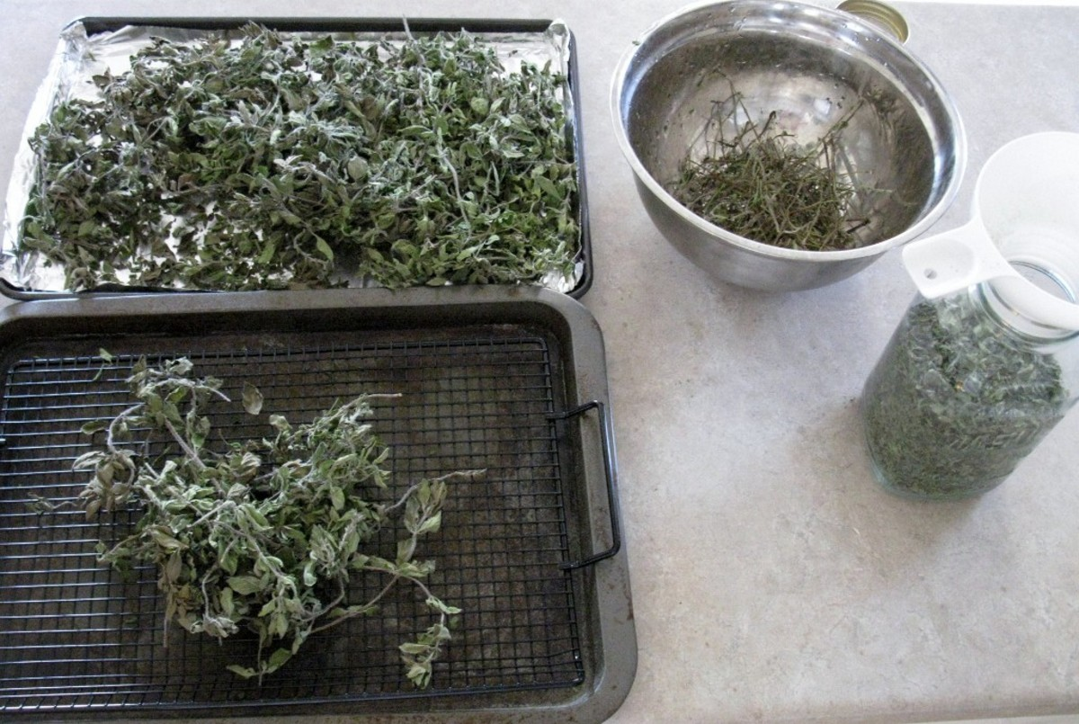 Oregano after drying ready to sift, with bowl for stems and jar for storage