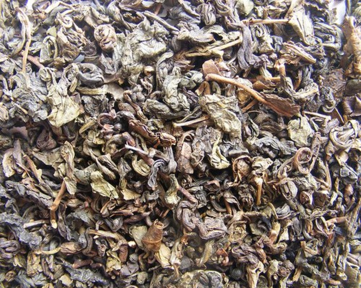 Oolong tea leaves being dried