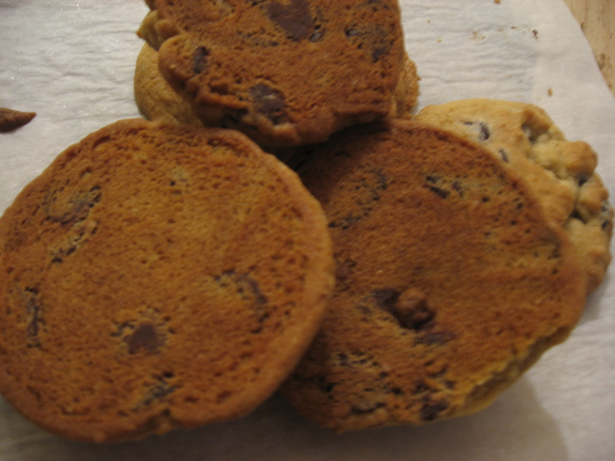 The finished chocolate chip walnut cookies. The bottom side's perfect coloring suggests moist, chewy, light crispiness.