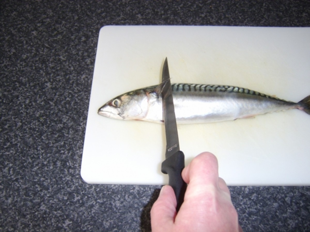 Making the first filleting cut