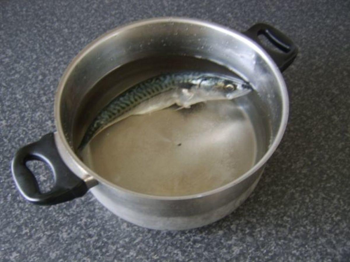 Mackerel ready to be poached