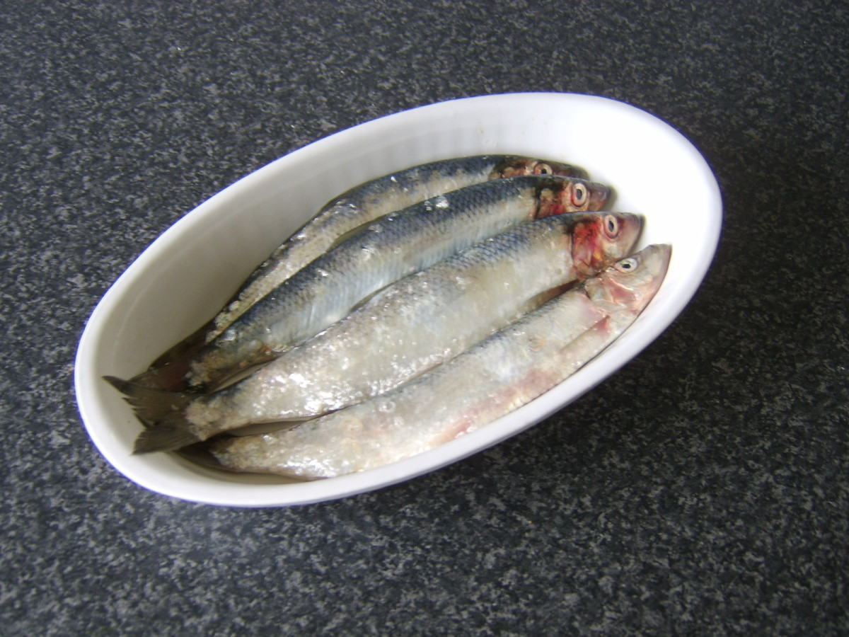 Fresh, uncleaned herring