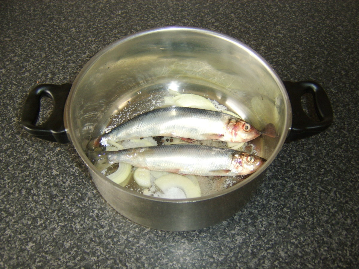 Herring and seasonings are placed in large pot