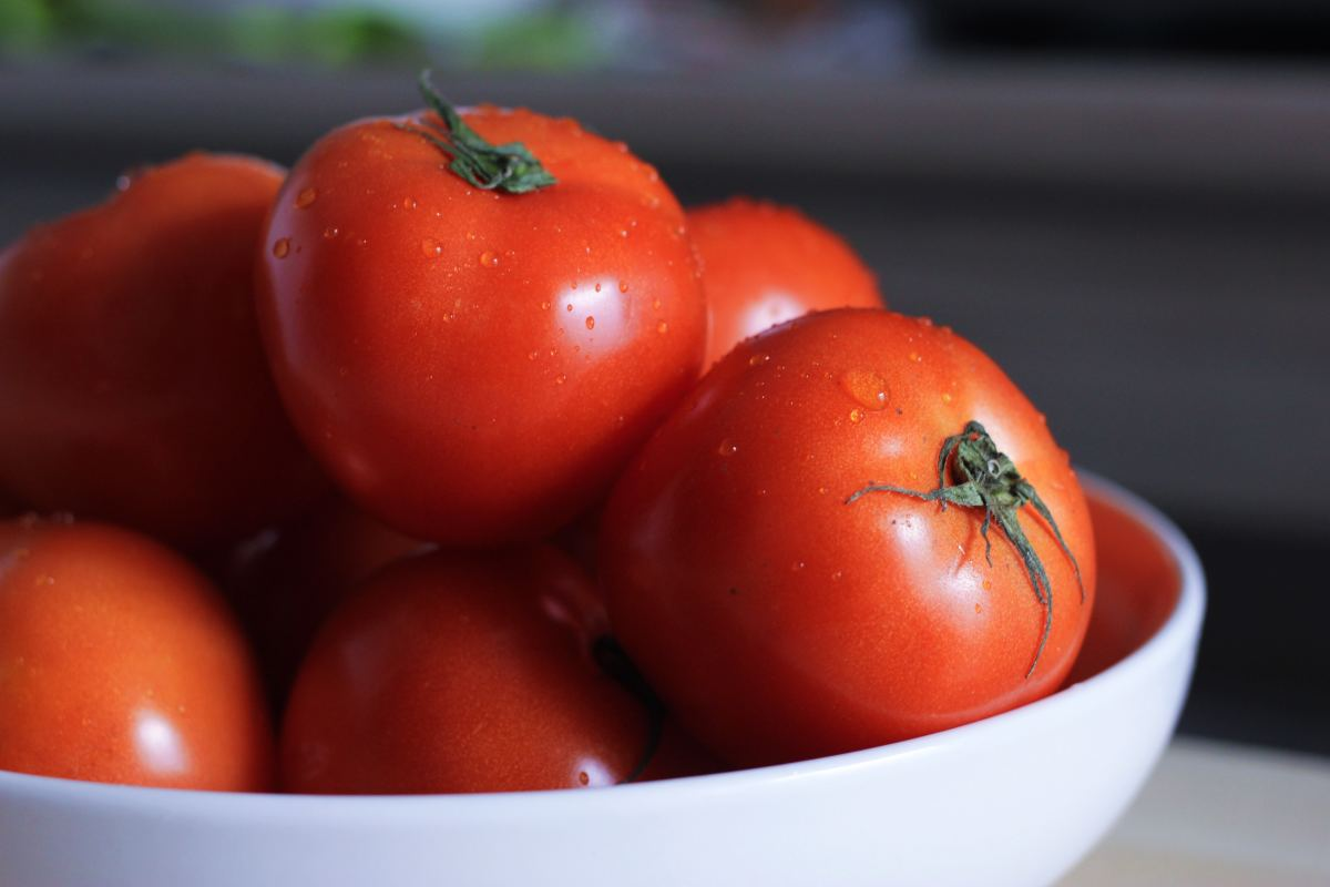 Fully ripe tomatoes.