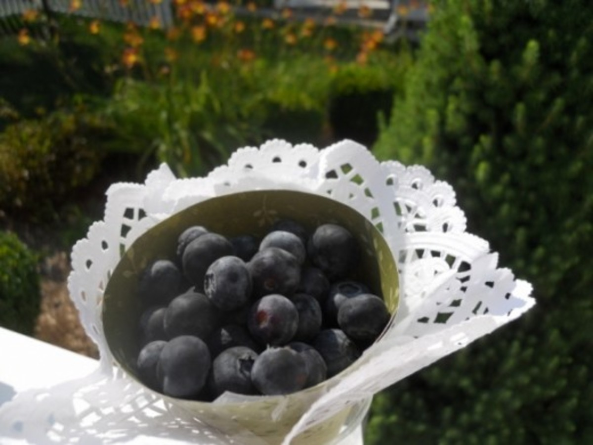 Fill with drained blueberries and let each child take one to nibble on.