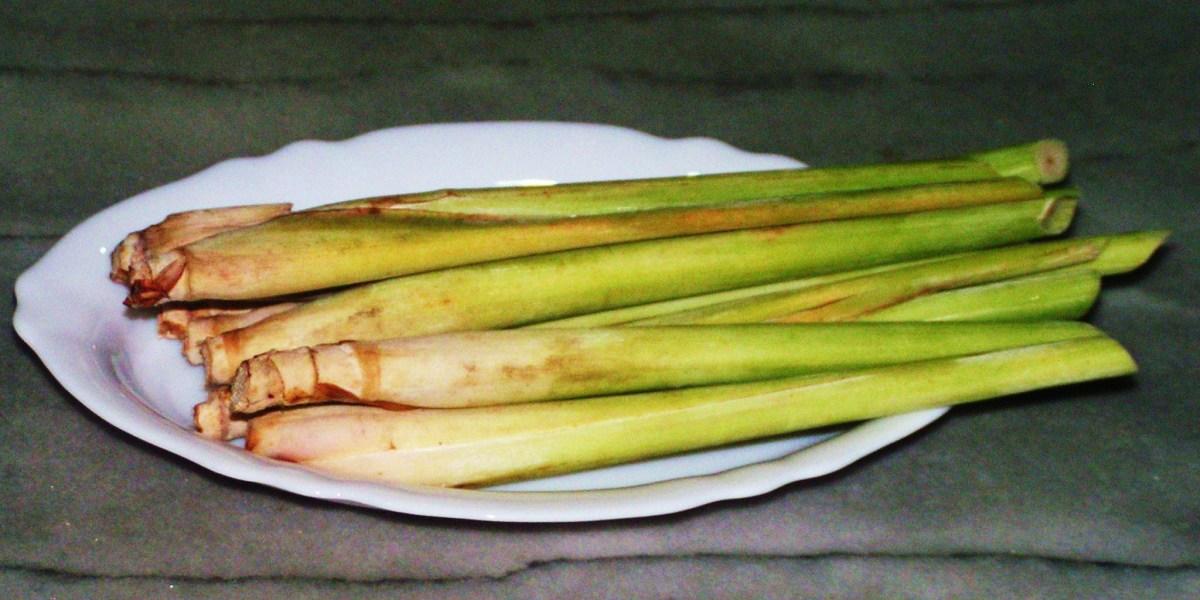 8 Stalks of Lemongrass