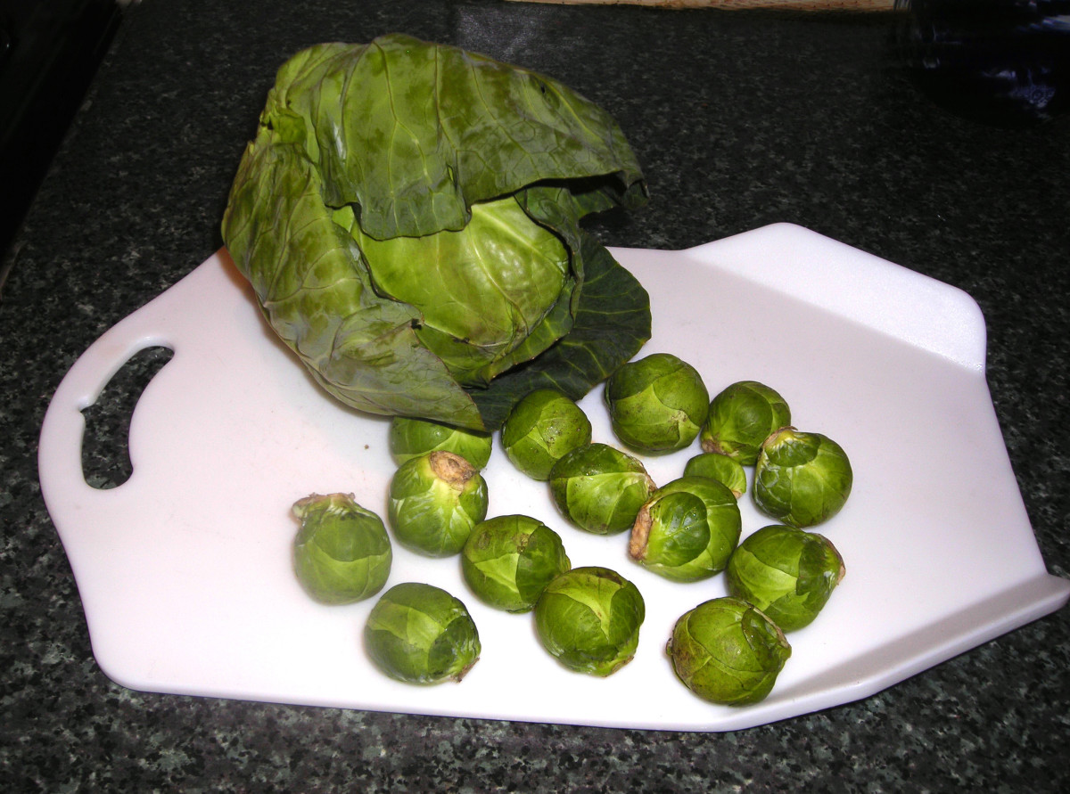 Brussels sprouts and cabbage