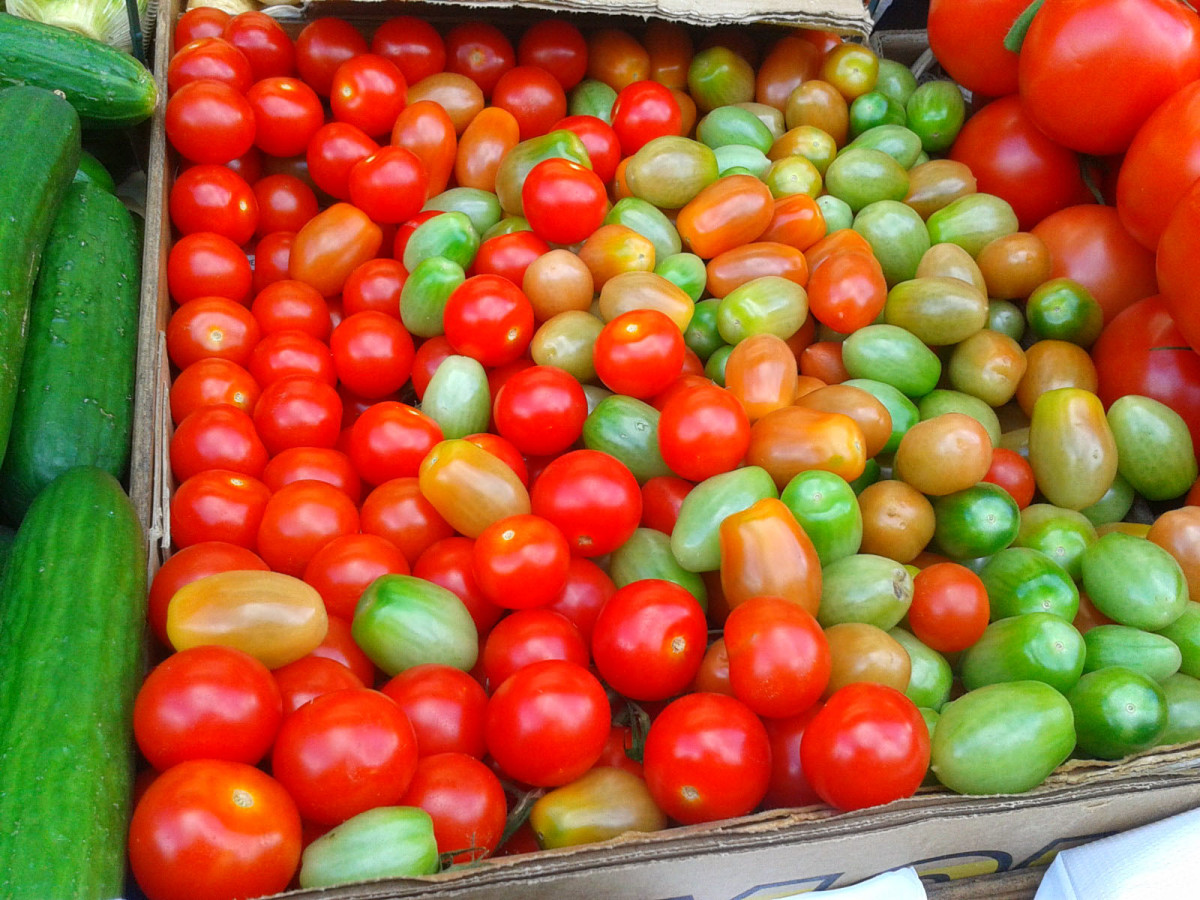 We now have tomatoes all year round.