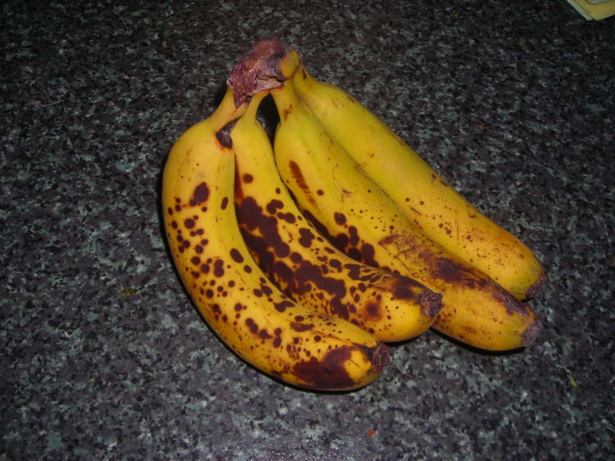 Ripe bananas - yellow speckled with brown