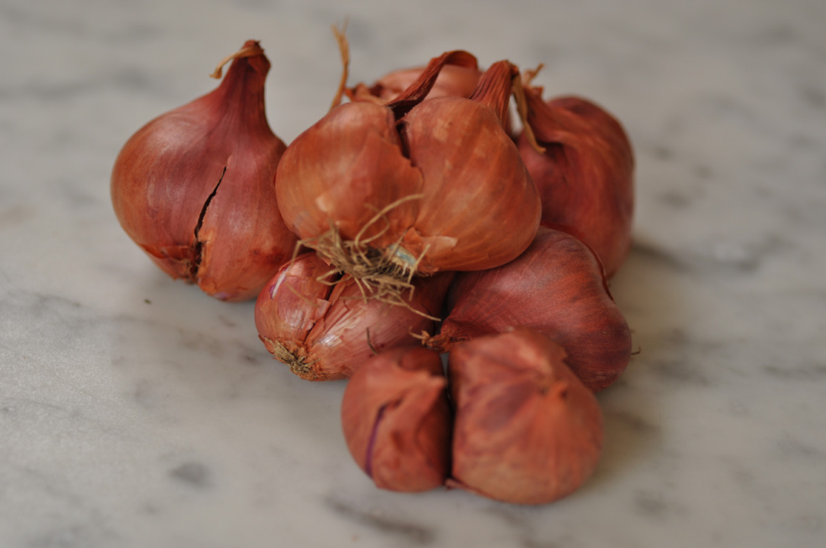 Red Asian Shallots, essential for certain Penang curries, but not always readily available.  Image: © Siu Ling Hui