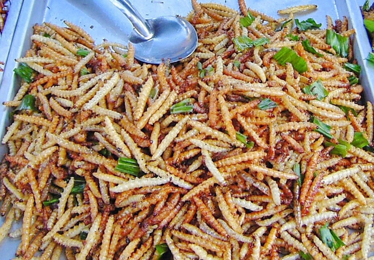 These deep-fried bamboo worms are the larval form of a moth called the bamboo borer.