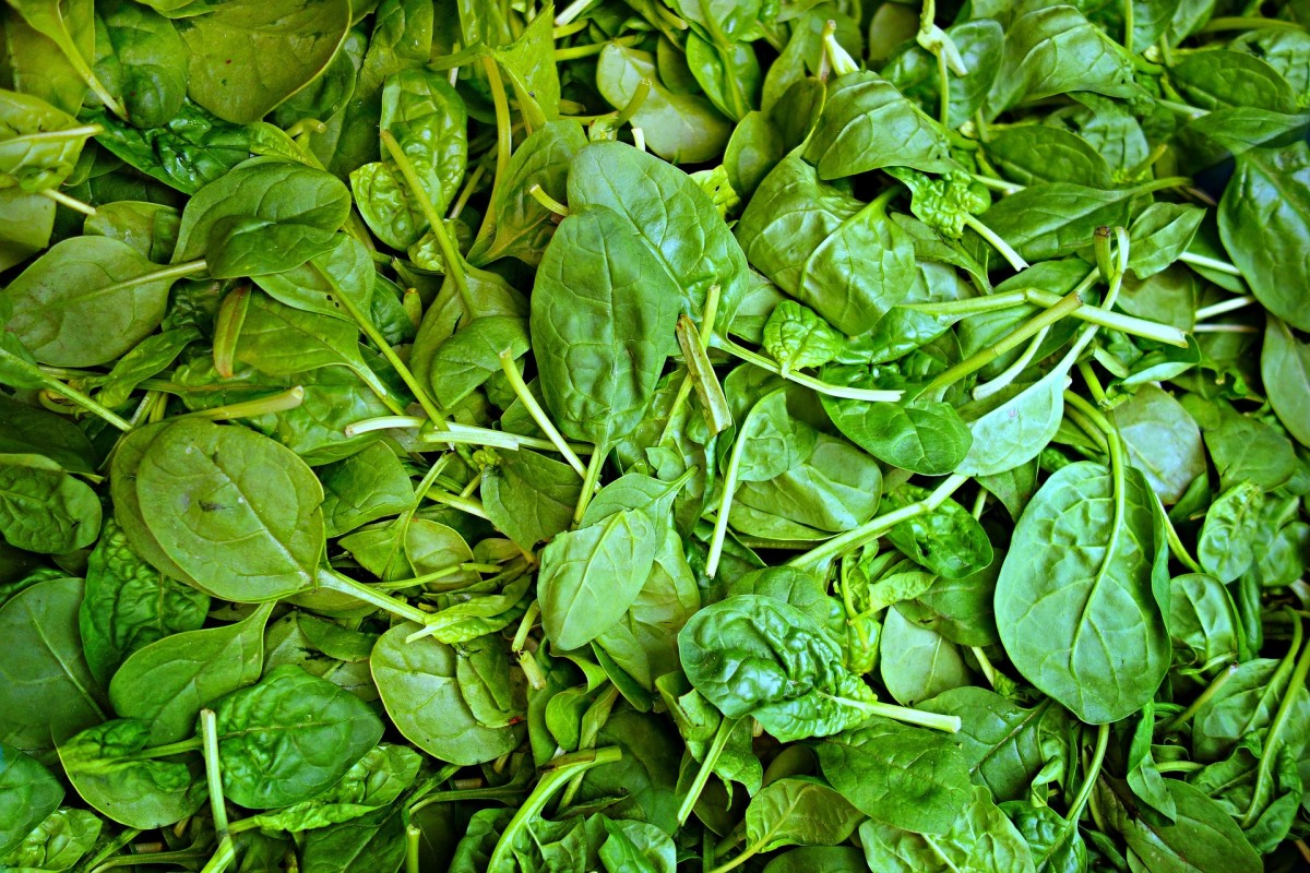 "baby spinach for your ""nest"""