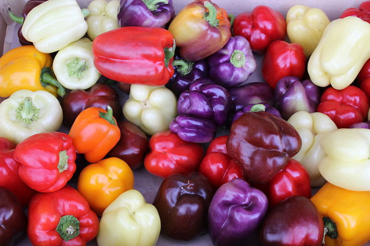 Less common bell pepper colors include purple and white.