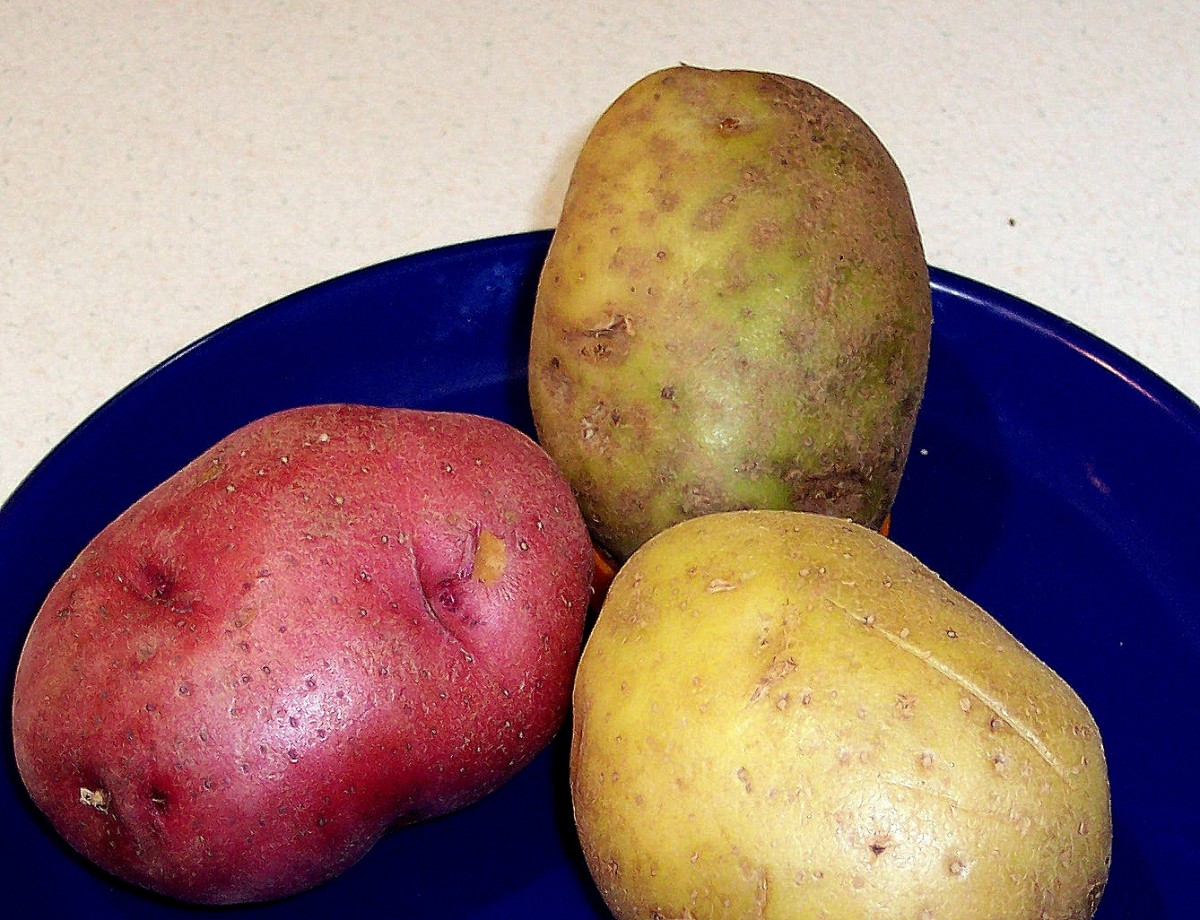 The high-starch Russet Potato, great for baking, comes apart easily when cooked. Medium to low-starch varieties, such as Red Potatoes and Yukon Golds, hold together better and thus are more suitable for stews. So ignore that Russet in the middle.