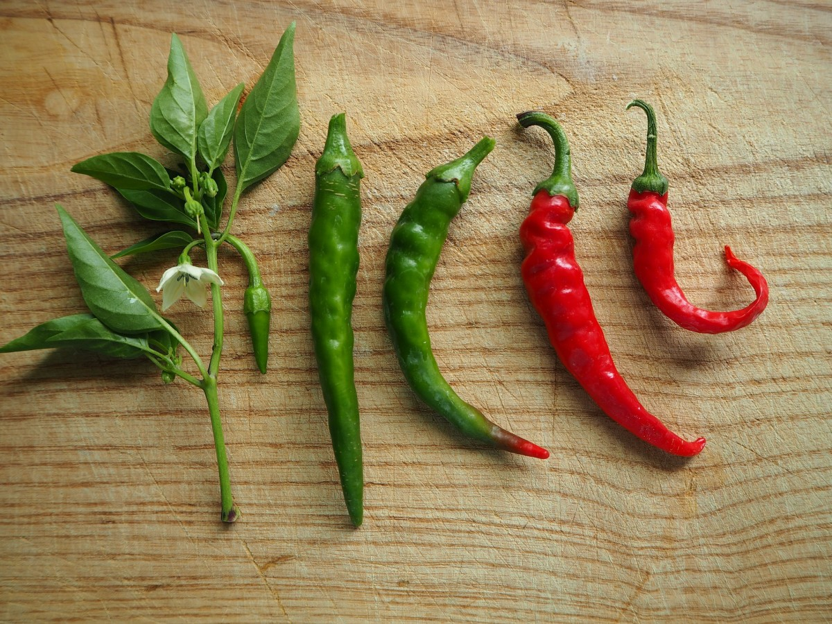 The 5 Stages of the Paprika Fruit