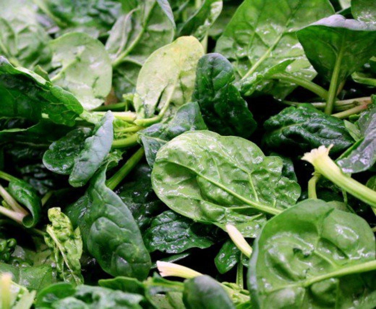 Is Olivia de Havilland's fresh spinach salad one of the keys to her longevity?
