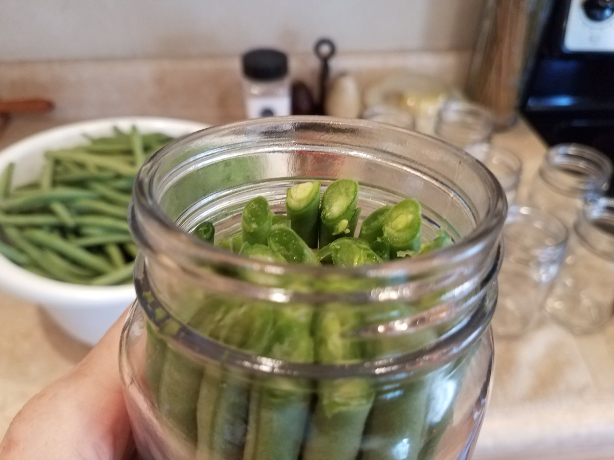 Then cut them down so they are only as high as the neck of the jar.