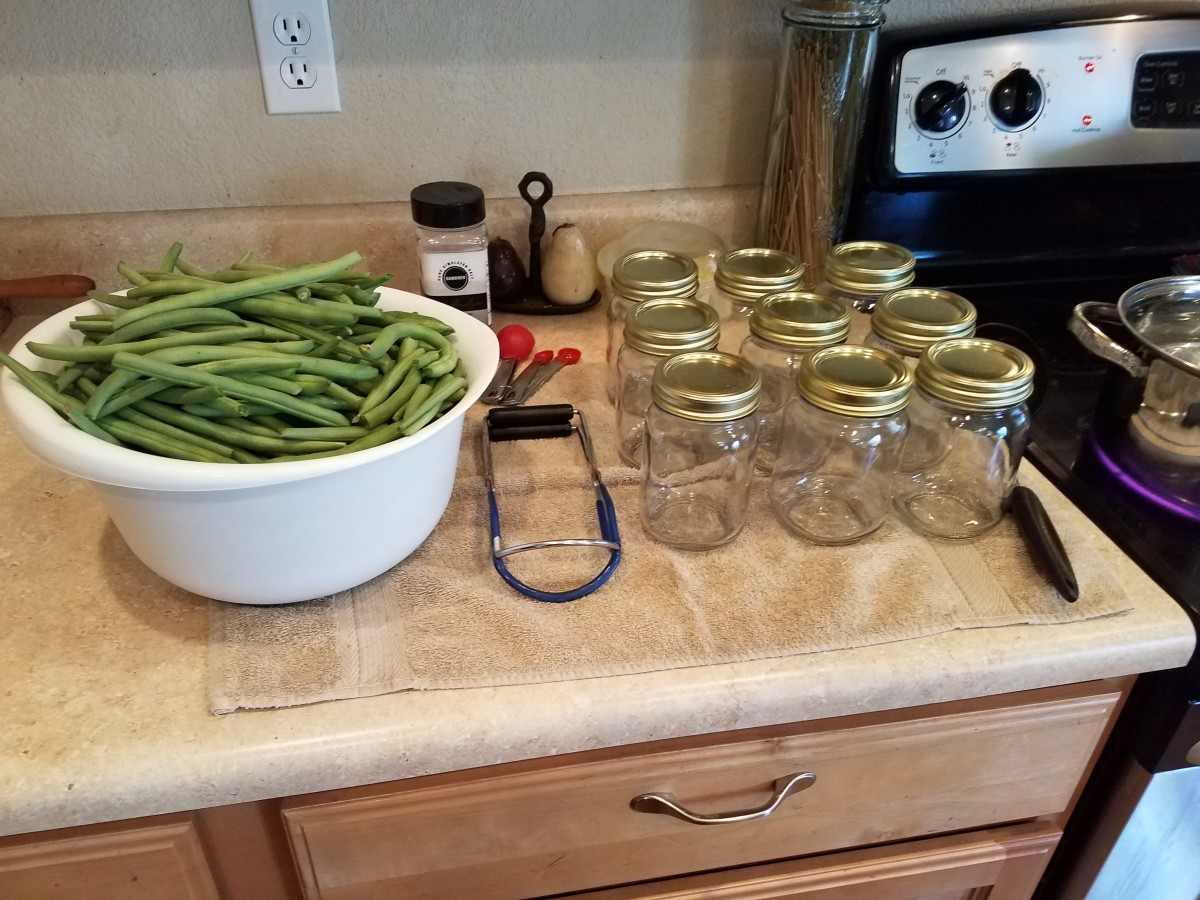 You'll need clean pint canning jars, a canning kit, a large ladle, a damp washrag, salt, measuring spoons, clean lids and rings, and green beans.