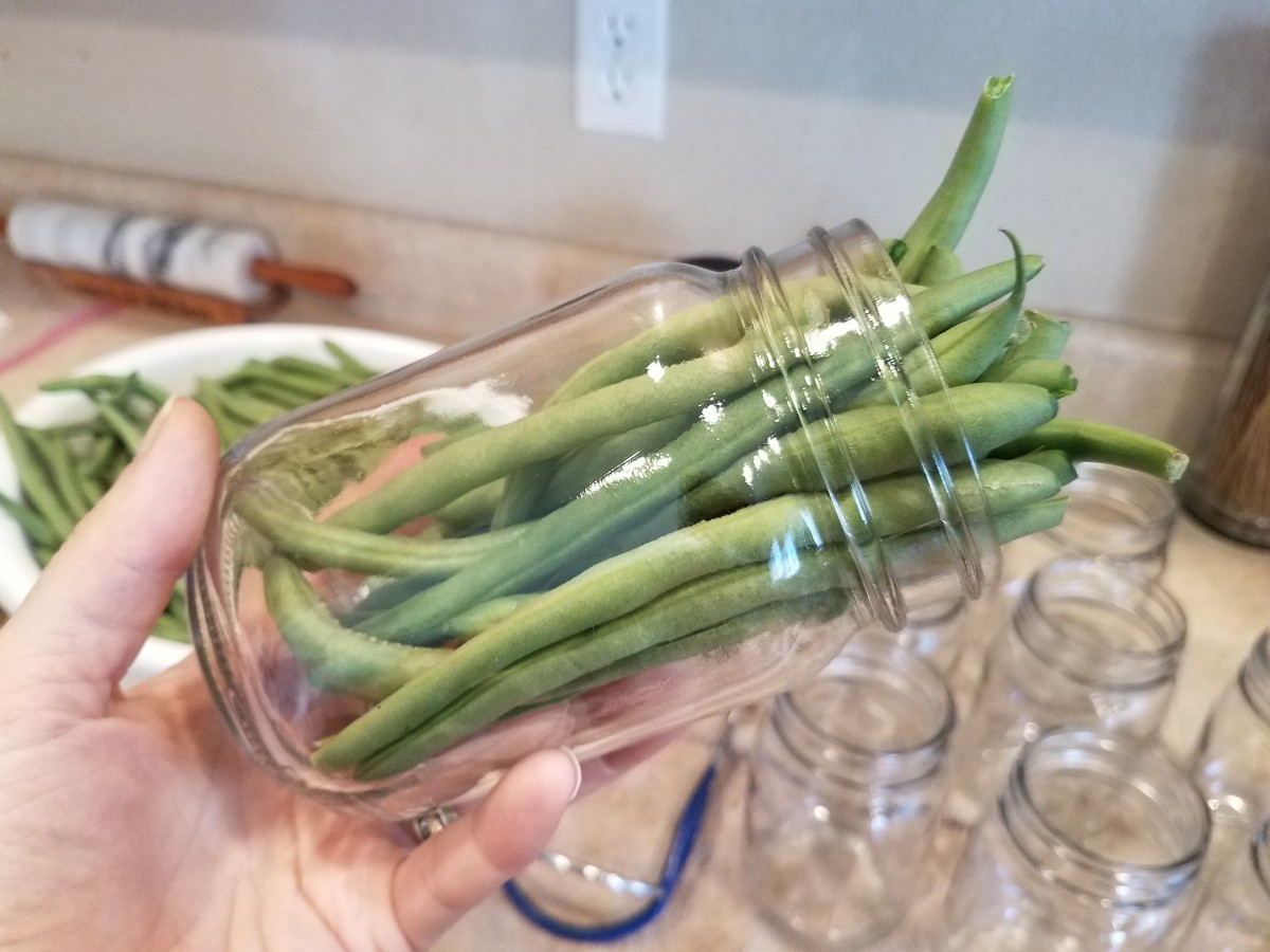 Fill your jars with green beans. I prefer mine to stay long, but you can chop them into smaller pieces if you'd like.