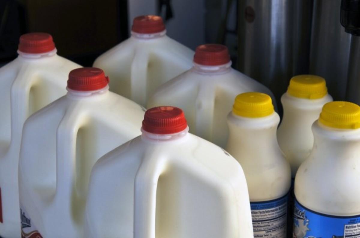 Cartons of milk