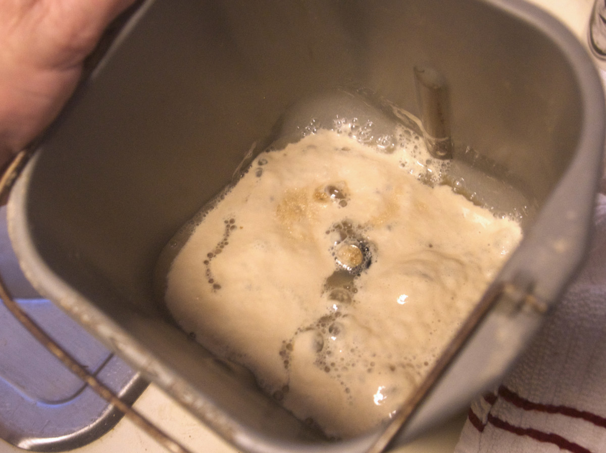 Softened yeast in warm water.  Ready for the rest of the ingredients and the bread machine.