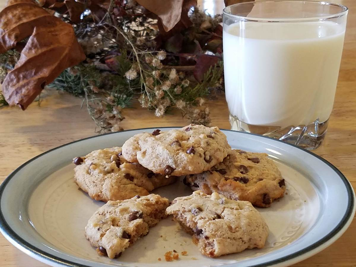 Gluten-free maple walnut chocolate chip cookies, served warm with a glass of milk.