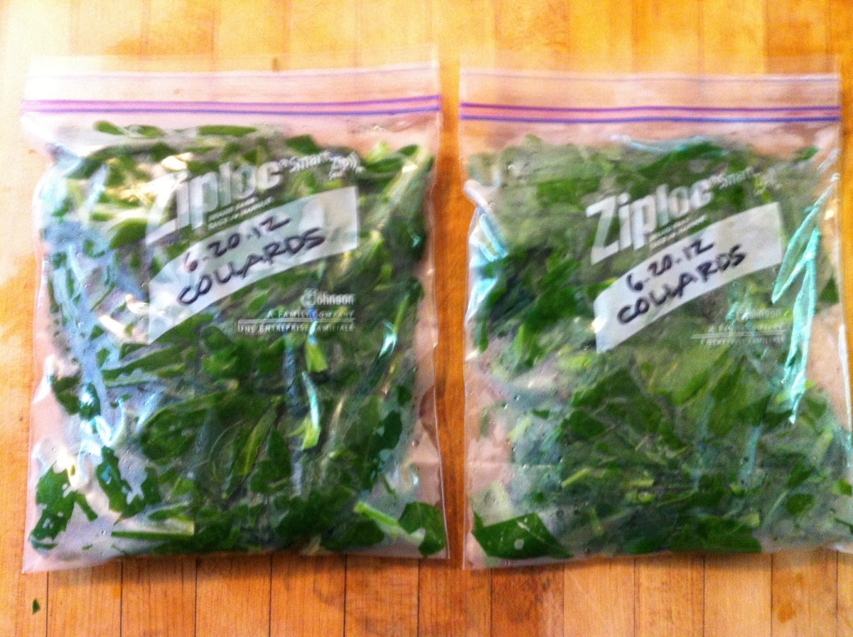 Blanched greens ready for the freezer