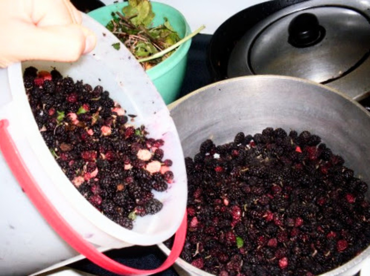 Sort the berries, taking out any sticks, leaves, and pink unripe berries.