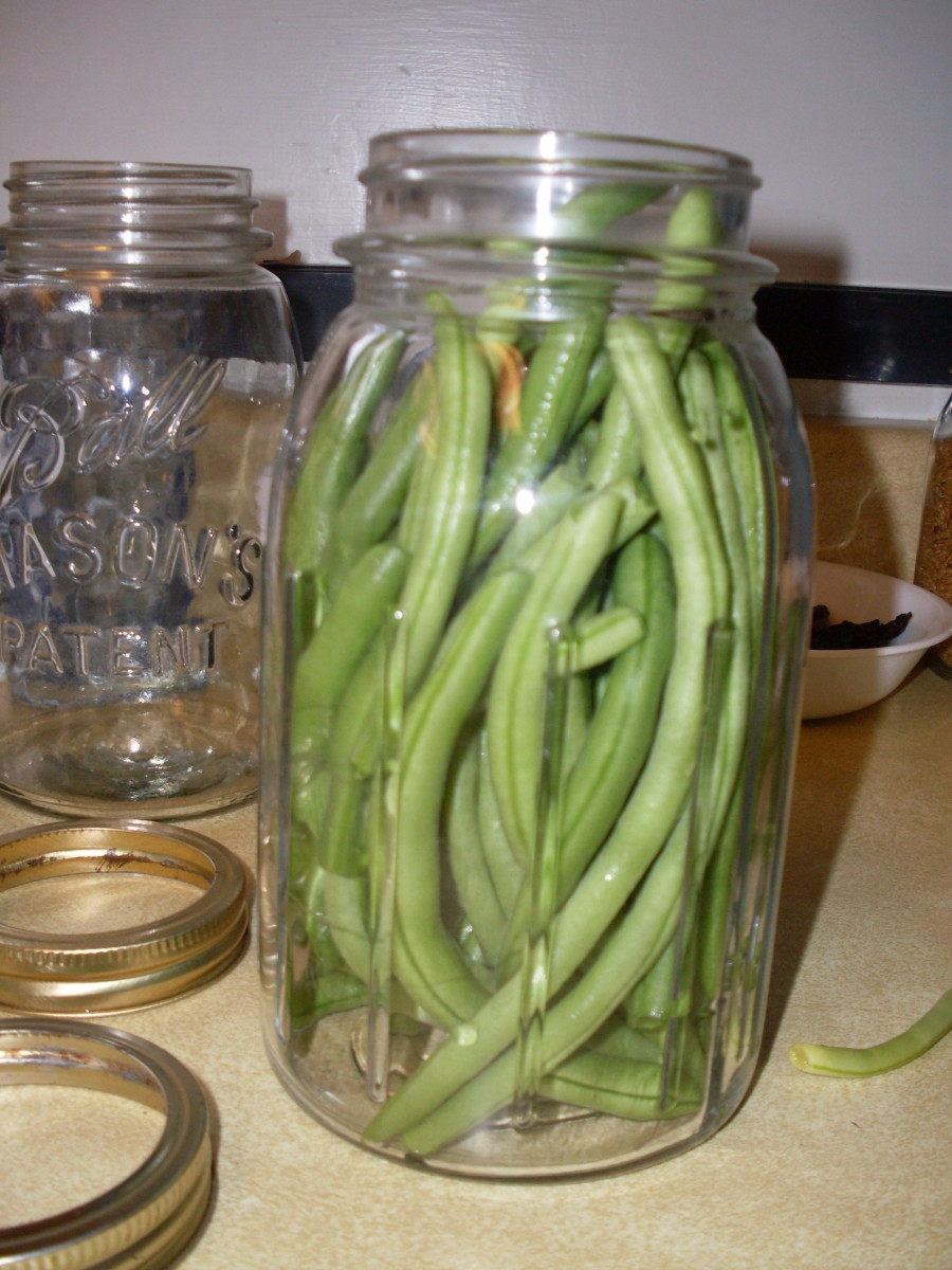 A properly filled jar of French filet beans.