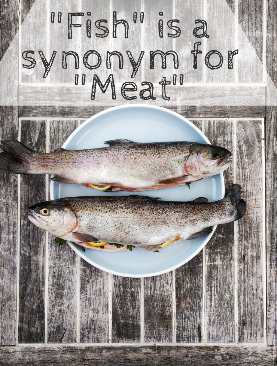 Fish is meat.