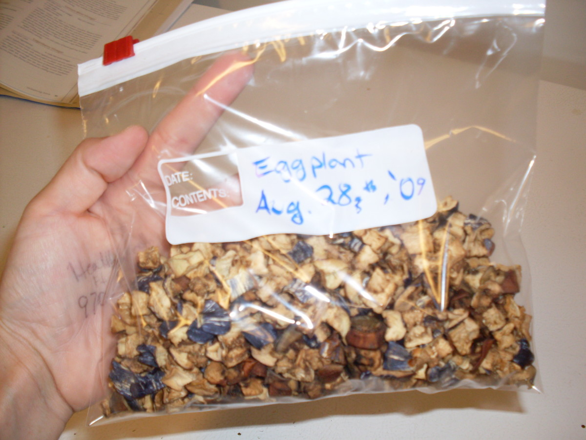 ...and place in an airtight bag or glass jar. In this bag are about three large eggplants.