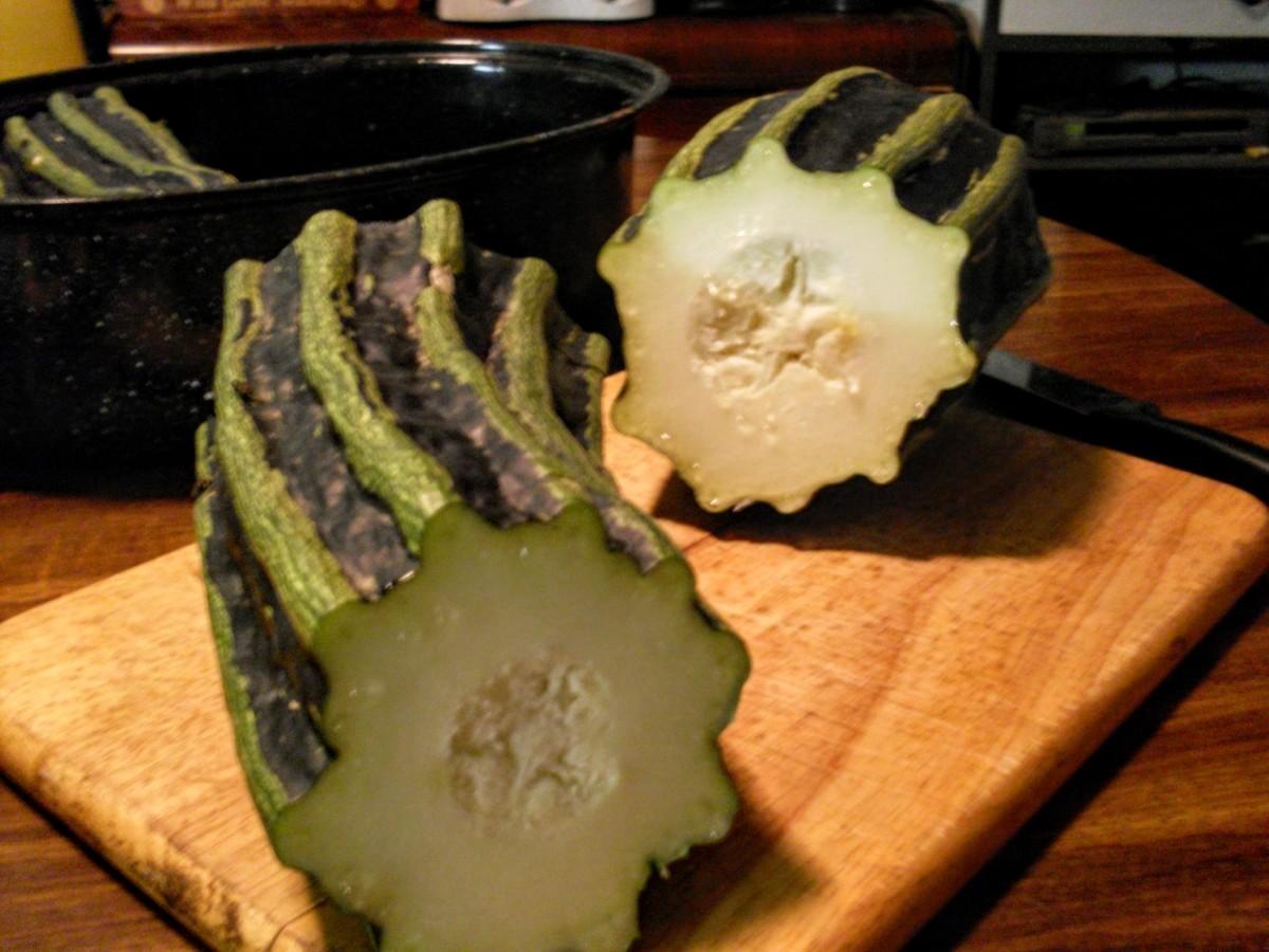 Overgrown zucchini and other over-mature summer squashes or good candidates, also. Cut squashes in chunks...