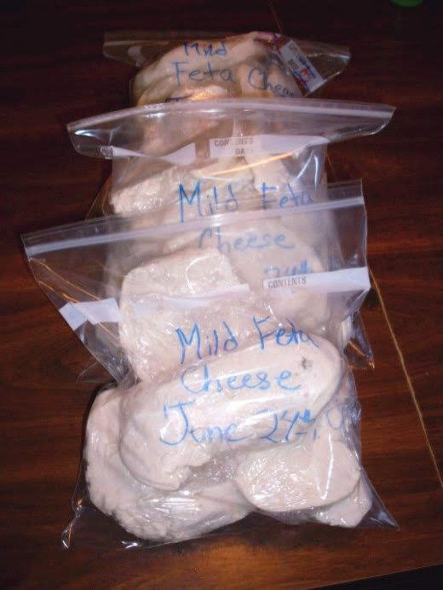 Store in the freezer in carefully labeled bags. Include type of cheese, date, and notes on quality.
