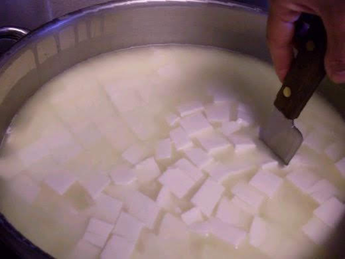 Cut the curds into 1/2-inch strips.
