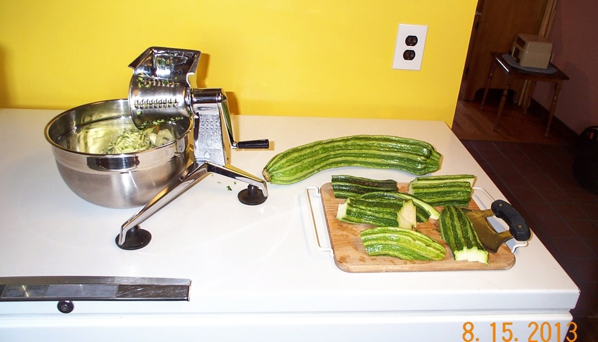 This zucchini got out of hand and grew to club-size! While it has a fairly small seed cavity, shredding is the obvious way to go.