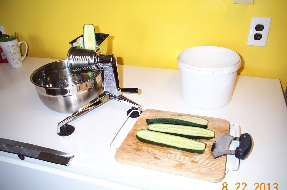 The size to which you cut your squash prior to shredding will depend on your shredder or food processor. This shredder can handle big strips. Halving or quartering big squashes is usually enough.