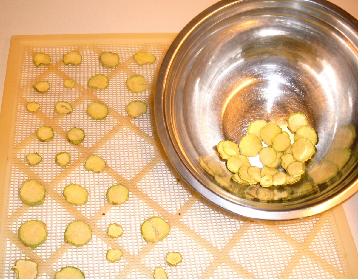 Dry squash chips until brittle, like potato chips, at 130*-140* F. Squash is famous for reclaiming water from the air, so store as soon as cool in an airtight jar (glass is best), then in a dry, cool place.