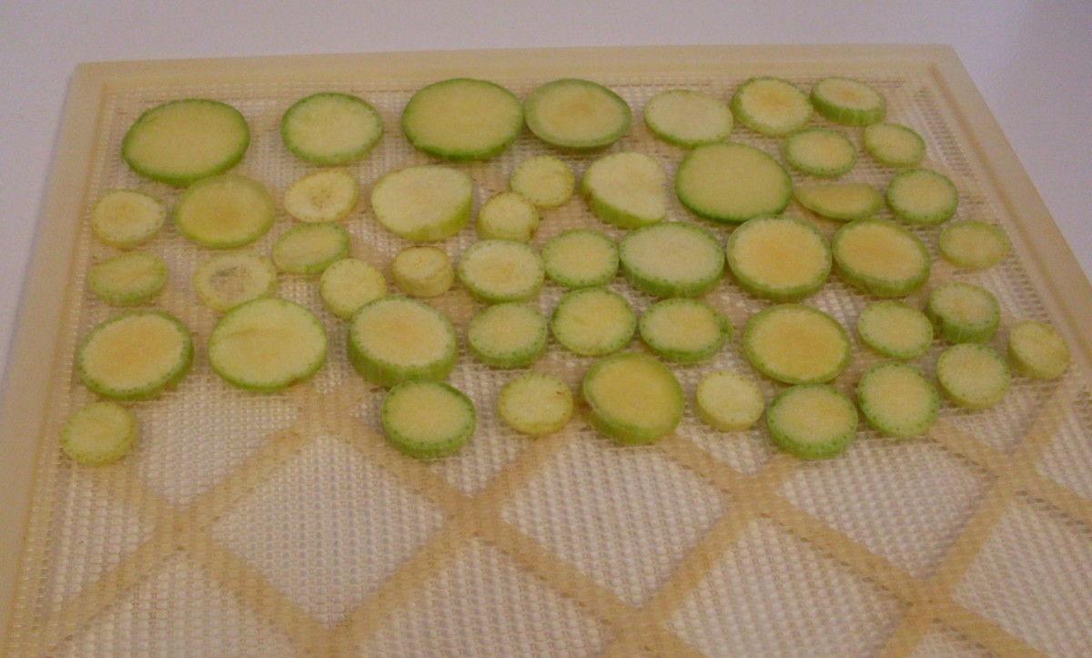 Arrange closely together on drying trays or screens. I am using a commercial food dehydrator, but it is possible to sun-dry squash chips in intense sunlight with low humidity, or in a very low oven.