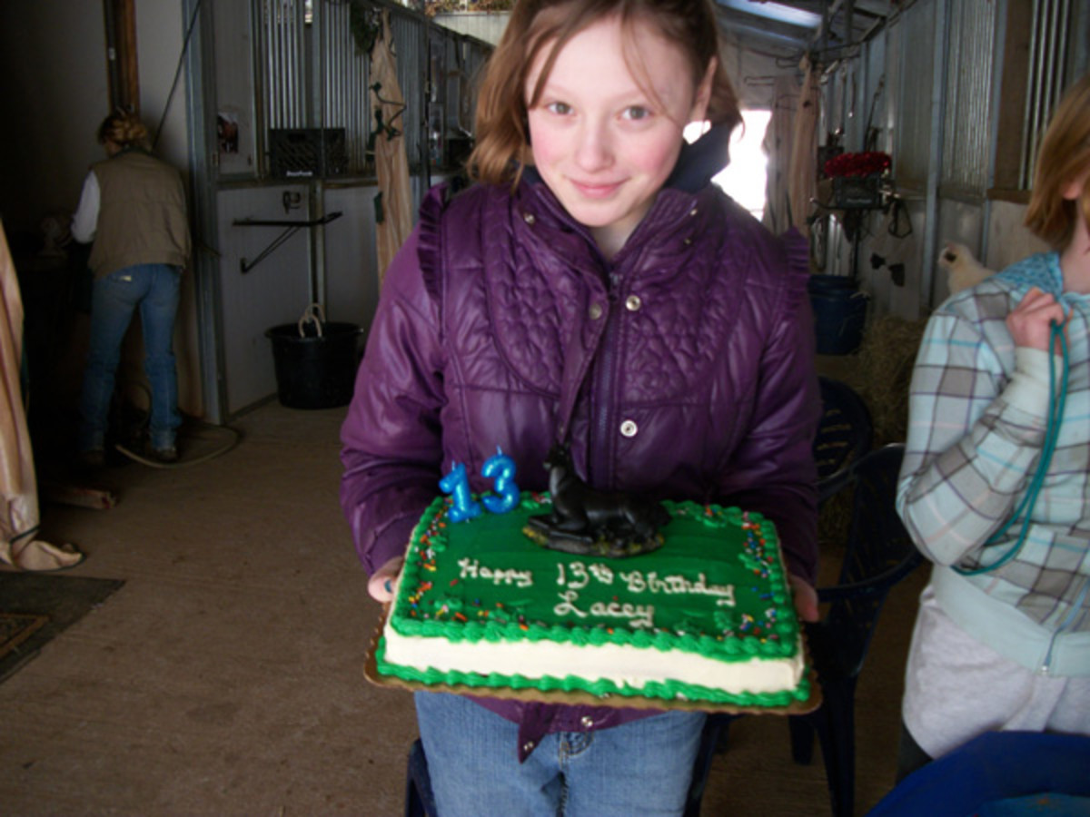 We had Lacey's 13th birthday party at a riding stable! All of the guest were able to horseback ride in the indoor riding ring. (It was in the winter.)