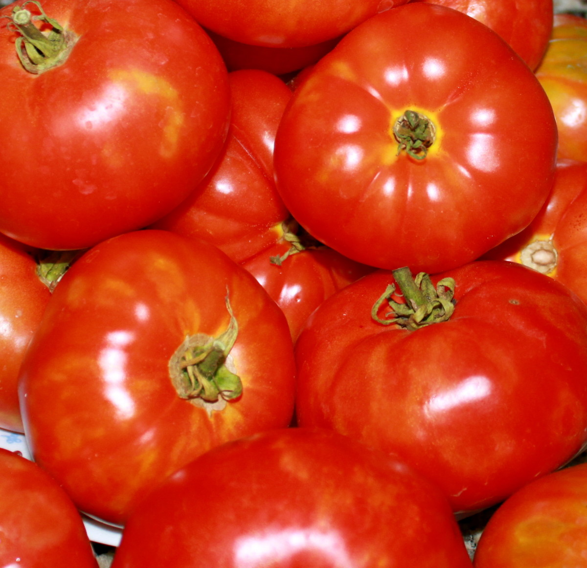 Chose Ripe Red Tomatoes for a Sweet Soup